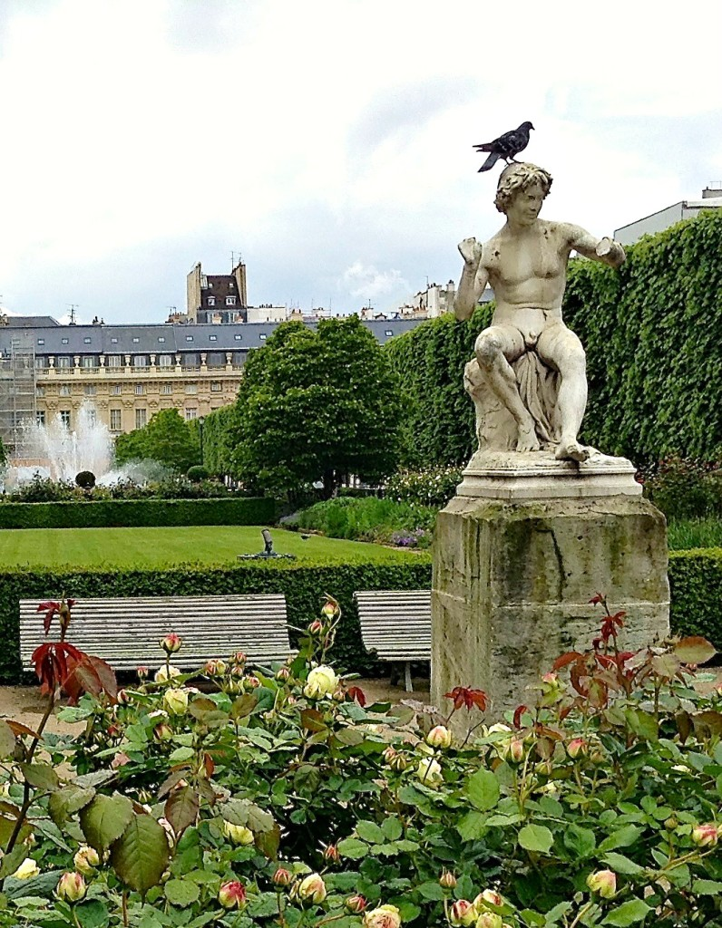 Palais-Royal garden with one of its avian residents. one of the fun finds in unexpected Paris.