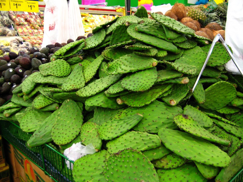 Nopalitos for sale, soon to be cactus on your plate; photo by megan.