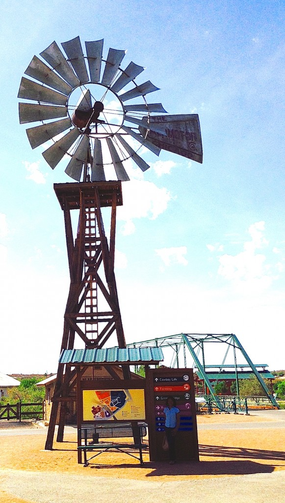 Water pumping windmill, power generator from New Mexico's cultural past.