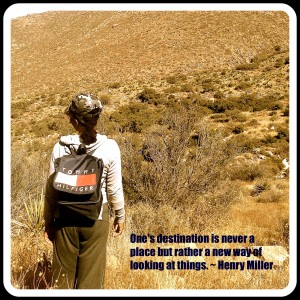 New Mexico desert wilderness view with Henry Miller quote.