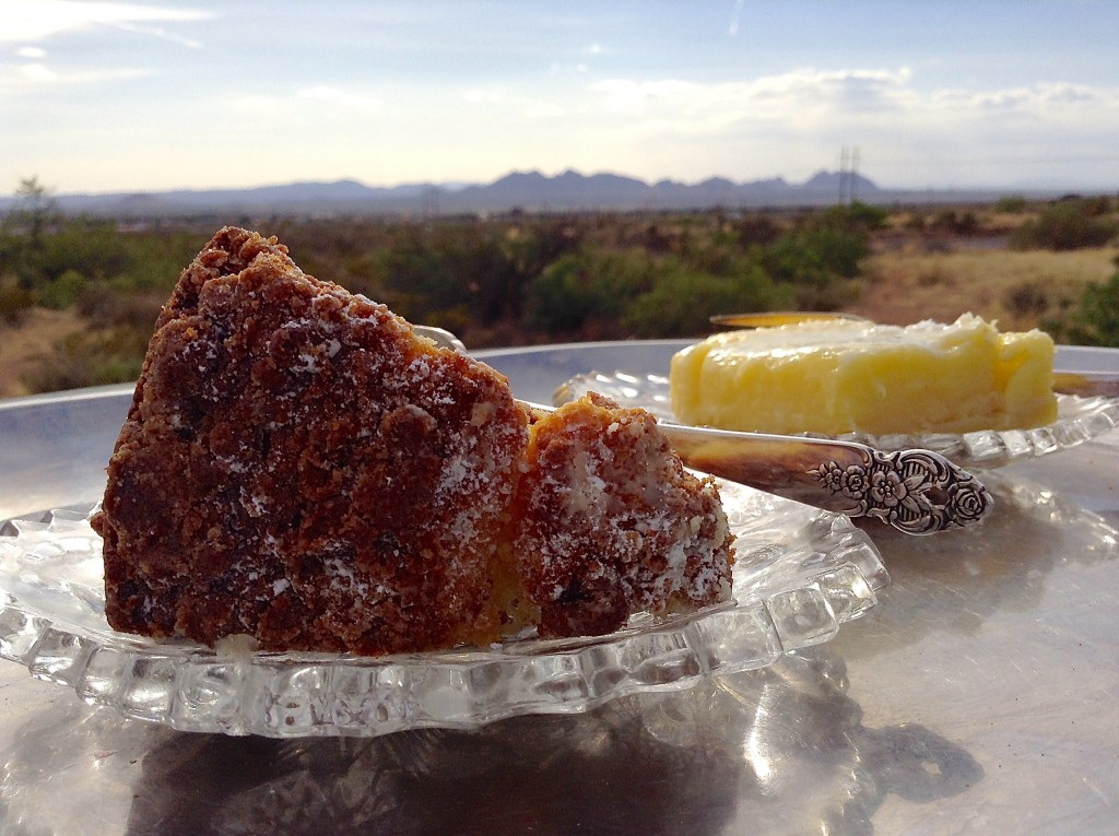 Dessert with the Doña Ana Mountains in Southern New Mexico.