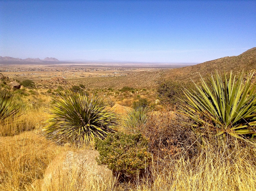 View of Las Cruces, largest city in Southern New Mexico, from the Organ Mountains.