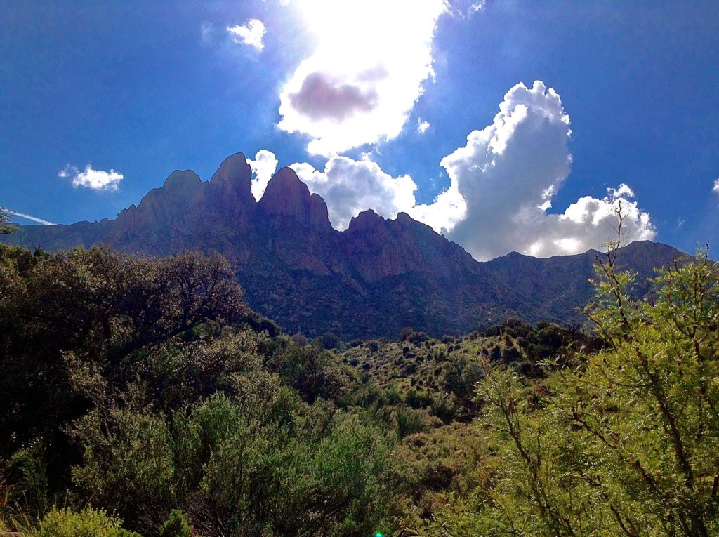 View of the Organ Needles on the way to an Aguirre Spring scenic hike.