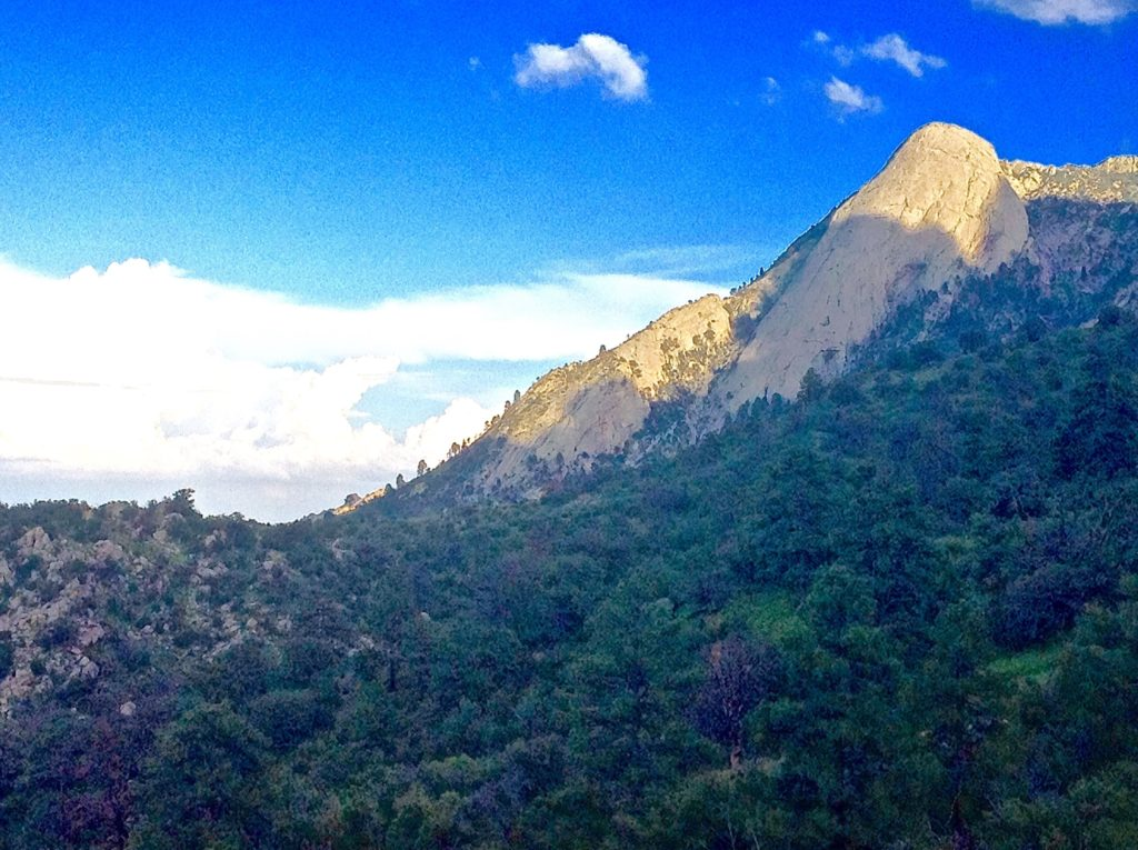 You get a terrific view of Sugarloaf Peak from this Aguirre Spring scenic hike.