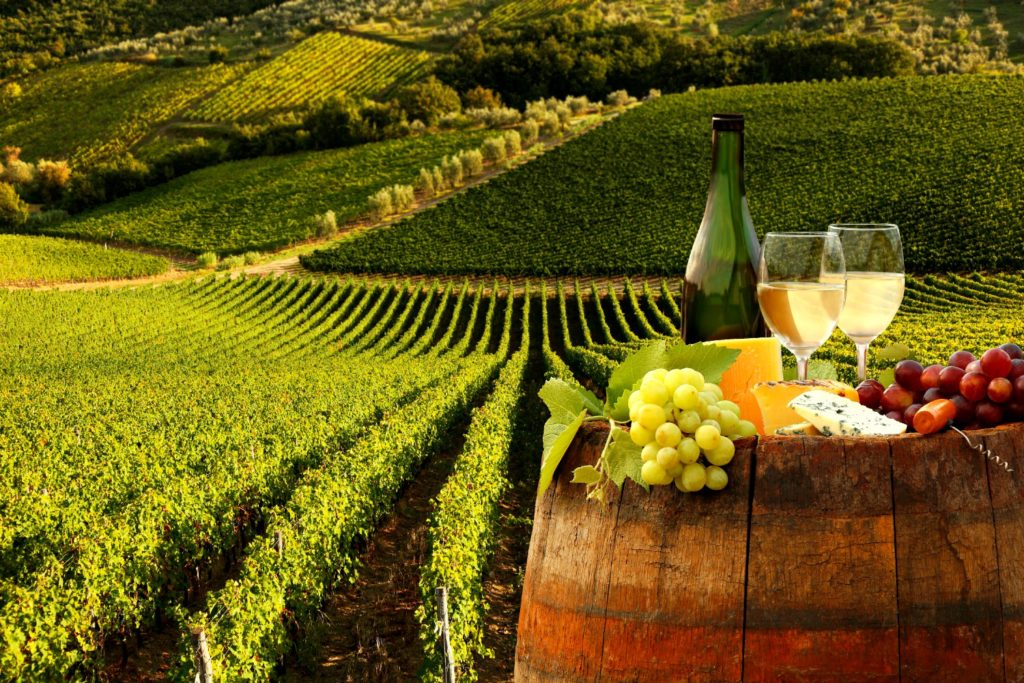A patio party with fruit, cheese, and wine or light beverages is a popular vineyard event everywhere. Image, White Wine with Barrel in Vineyard, is by samot.