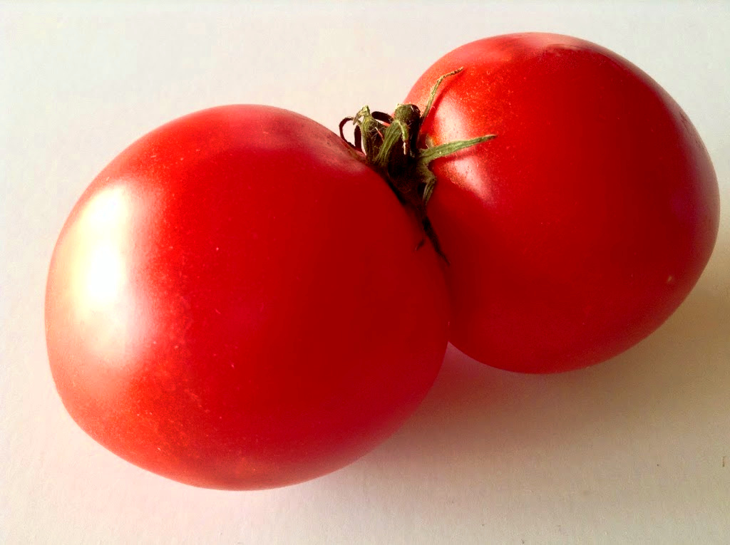 These red Siamese tomatoes illustrate one of our favorite food quotes about homegrown produce.